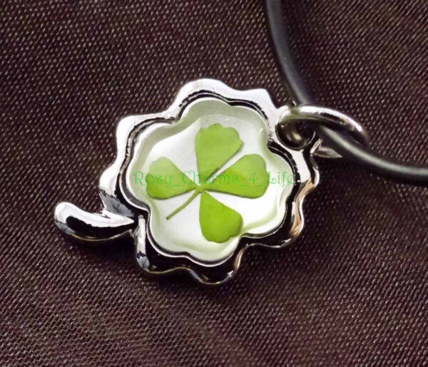 Real four leaf clover attached with clover metal frame cord 19