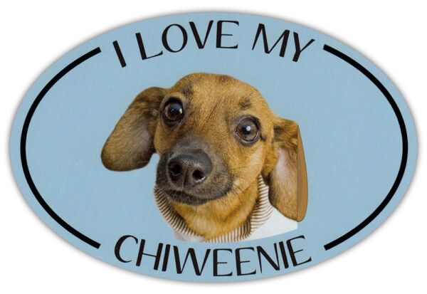 Oval Dog Breed Picture Car Magnet I Love My Chiweenie Bumper Sticker Decal $6.99