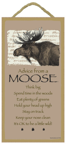 ADVICE FROM A MOOSE Primitive Wood Hanging Sign 5