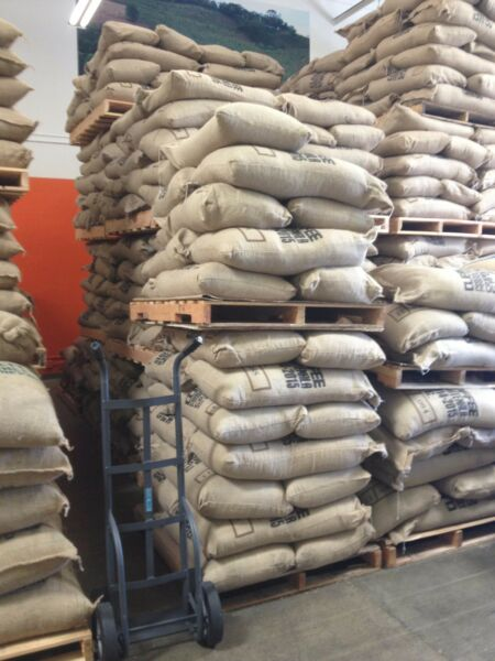 20 LBS HAWAII KONA PRIME FRESH CROP ORGANIC UNROASTED BULK GREEN COFFEE BEANS