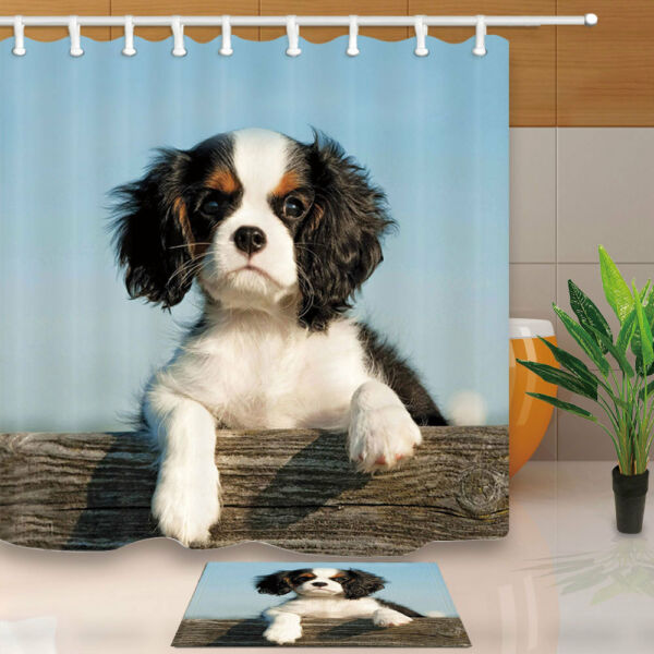 Bernese Mountain Dog Waterproof Bathroom Fabric Shower Curtain and Hooks 71in