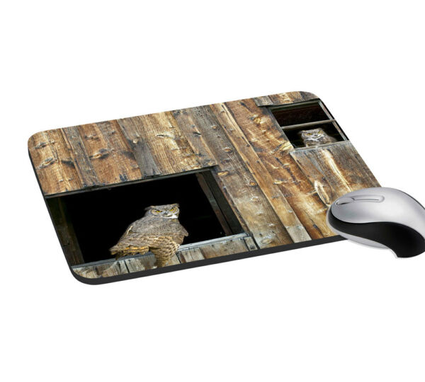 Eagle Desktop Mouse Pad Notebook With Wrist Support Rest Mice Mat 7.2x8