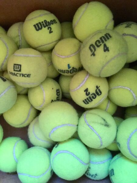 20 Used Tennis Balls - Great for Dog Toys!