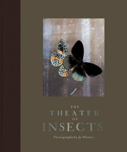 The Theater of Insects by Jo Whaley