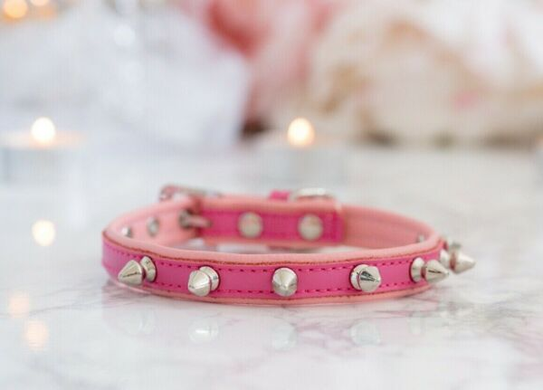 NEW Luxury Vegan Dog Spike Collar Cats Pets Two Toned Hot Pink Enchanted Pets $25.00