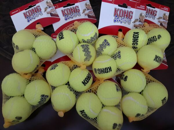 24 KONG Extra Small Tennis Balls Air DogPuppy Squeakair X Small Bulk Wholesale $40.99
