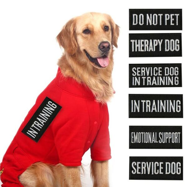 Extra patches for Harness Vest Service Dog In Training SECURITY Therapy Dog