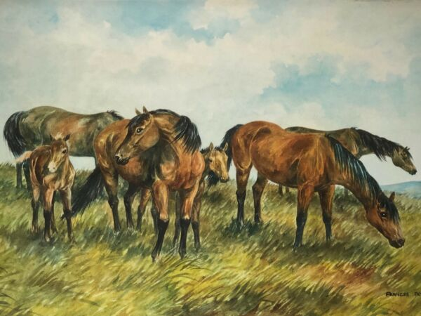 Fine Watercolour Painting Cleveland Bay Horses & Foals Signed Listed Frances Fry
