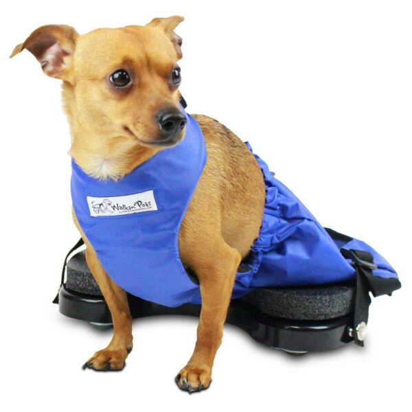 Scooter for Rear Legs Indoor Dog Wheelchair Alternative for Paralyzed Pets $154.00