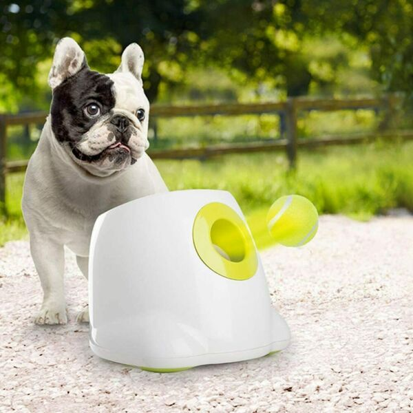 BEST Interactive Automatic Dog Tennis Ball Launcher Thrower For All Sizes NEW US