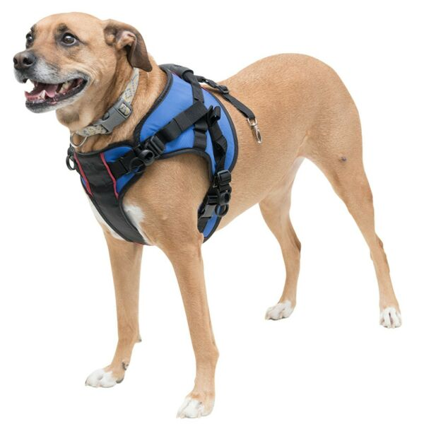 Refurbished Combo Front Dog Harness for Mobility Helps Dogs with Arthritis $19.97