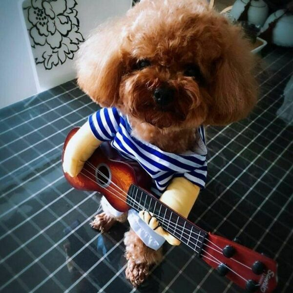 Funny Guitarist Pet Dog Costumes Puppy Halloween Party Costume Clothes Cosplay $9.77