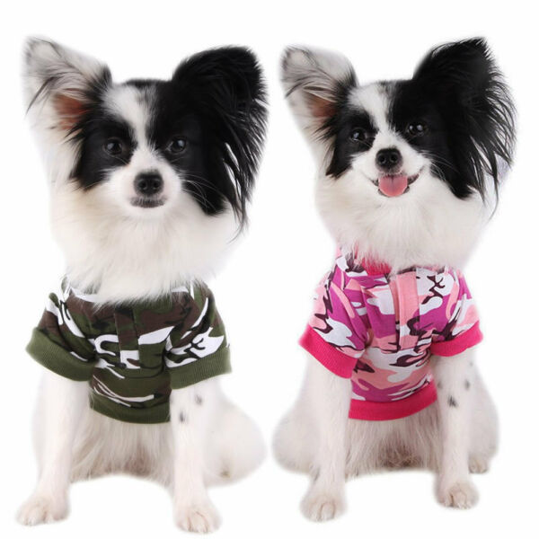 Cute Dogs Camouflage Hoodie Puppy Cat Coat Pets Sweater Clothing Apparel Tshirt $7.99