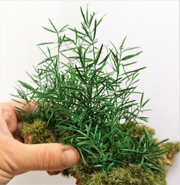 01 Magical Forest? Plant For Jungle With Green Leaves Diorama Nativity Plastic $16.49
