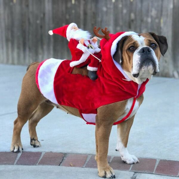 Pet Dog Christmas Cosplay Hoodie Costume Puppy Party Santa Dress Warm Outfit US $18.04