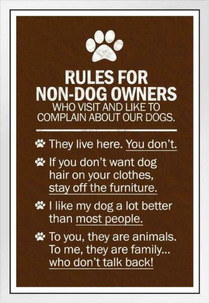 Dogs Rules For Non Dog Owners White Wood Framed Poster 14x20 $49.99