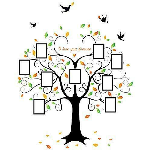 Family Tree Wall Decal 9 Large Photo Picture Sticker Frames Peel and Stick