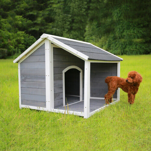 US wooden puppy dog house Solid pine wood dog home For backyard patio garden $269.69