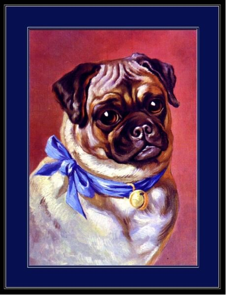 English Print Pug Puppy Dog Dogs Puppies Art Picture Vintage Poster $9.59