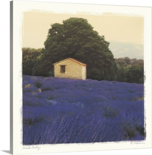 Lavender Country Canvas Wall Art Print Countryside Home Decor