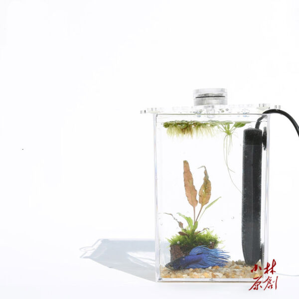 Tropical Betta fish mini nano arcylic tank aquarium small fish tank short heater