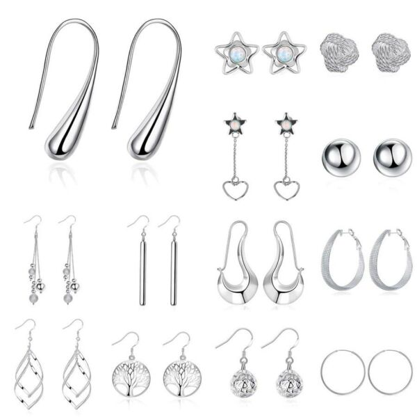 Ladies Fashion Jewelry Stainless Steel Silver Plated Dangle Hoop Earrings Studs