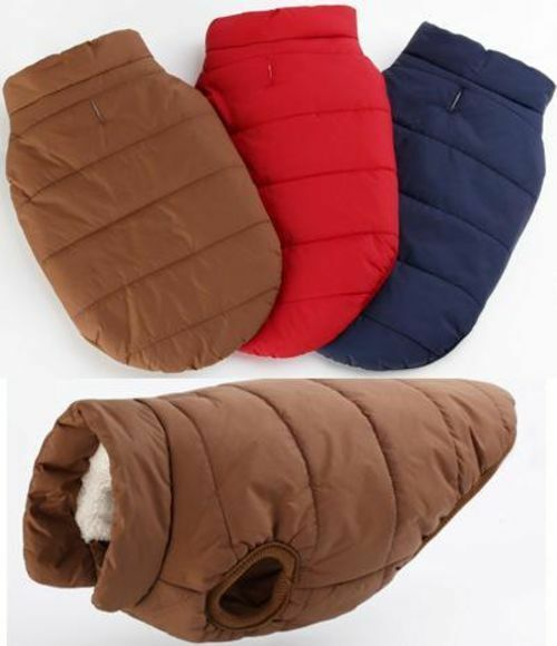 Winter Dog Clothes $25.99