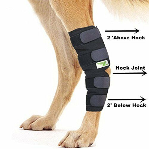 Knee Brace For Dogs Hock Protector ACL Therapeutic Dog Rear Leg 4 Strap SMLXL $22.99