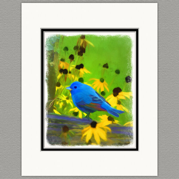 Indigo Bunting Blue Wild Bird Original Art Print 8x10 Matted to 11x14