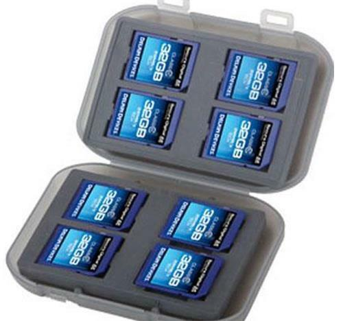 Delkin Devices SD Memory Card Tote- Protects up to 8 SD Memory Cards