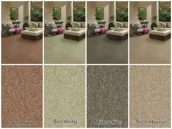 Durable Outdoor Area Rugs with Premium Bound Edges.