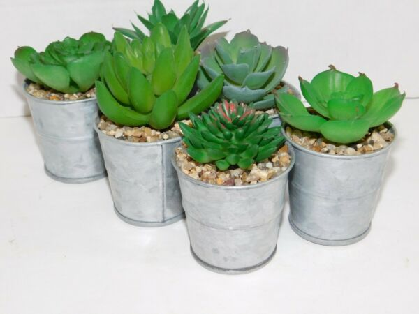 Succulents Mini Artificial Plants Metal Tin Pail Potted Sets of 4 or 6