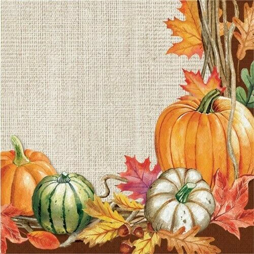 Harvest Wreath Lunch Napkins 16 Pack Fall Autumn Thanksgiving Decorations