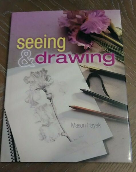 Seeing and Drawing by Mason Hayek (2004 Hardcover)