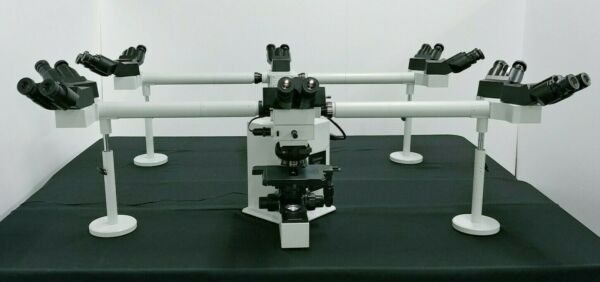 Olympus Microscope BX50 Multihead 10 Headed Teaching System with LED Replacement