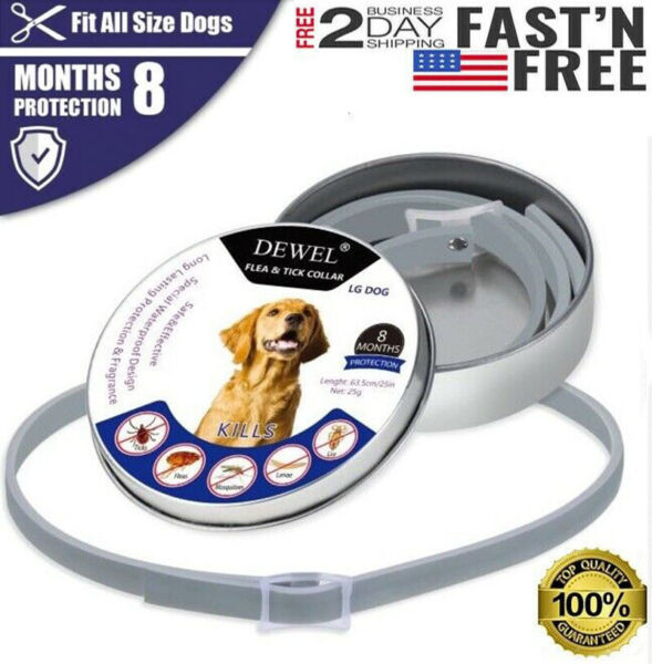 NEW DEWEL Flea And Tick Control Collar For Small Large Dog 8 Months Protection $9.99