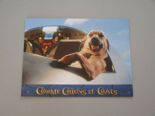 quot;COMME CHIENS ET CHATSquot; CATS AND amp; DOGS LOBBY CARD CHIEN DOG LB8 EUR 25.00