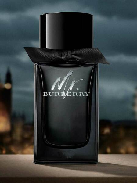 MR. BURBERRY FOR MEN ED PARFUM SPRAY 3.3 OZ 100 ML AUTHENTIC TESTER GERMANY $46.99