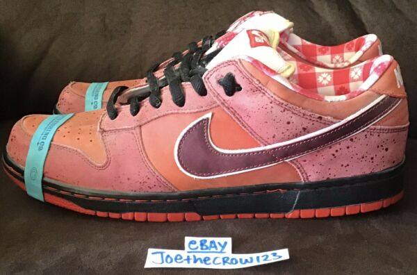 RARE CNCPTS x Nike SB Dunk Red Lobster T-shirt BROWN BAG Accessories Size 12 NEW