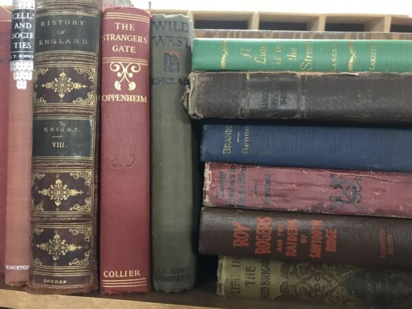 Lot of 10 Vintage Old Rare Hardcover Books Mixed Color Random