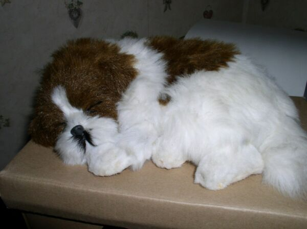 CUTE CAREFREE PETS 8quot; SMOOZY#x27;S BROWN amp; WHITE SLEEPING DOG LIKE PERFECT PETZZ $19.99