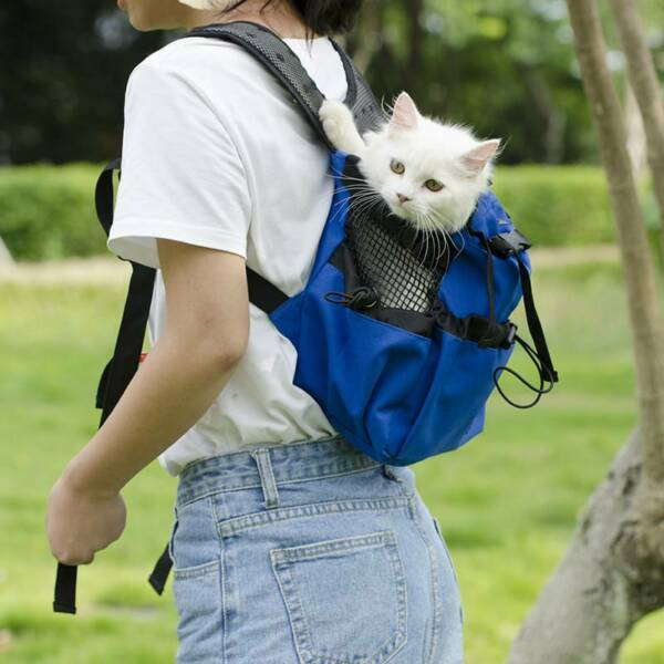 Outdoor Pet Carrier Backpack Breathable Puppy Dog Hiking Carrying Bags YS $29.08