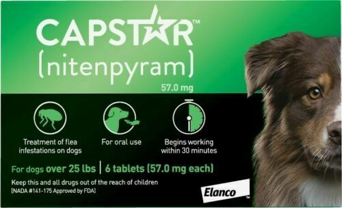 Capstar over 25 Lb Dog Flea Treatment 6 Count Expiration Date 09 2021 $24.95