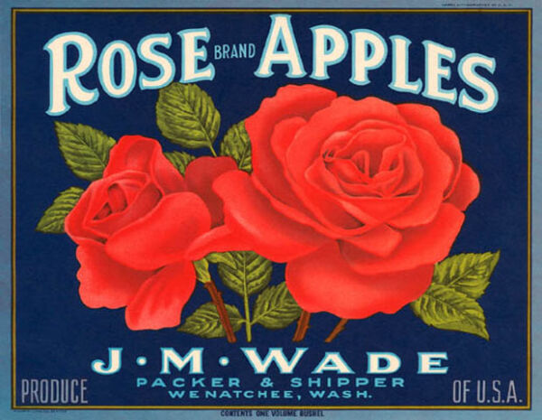 CRATE LABEL ROSE BRAND APPLES RED WASHINGTON PRODUCE OF USA VINTAGE POSTER REPRO