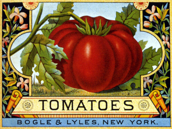 CRATE LABEL TOMATOES FRUIT HEALTH FOOD USA PRODUCE VINTAGE POSTER REPRO
