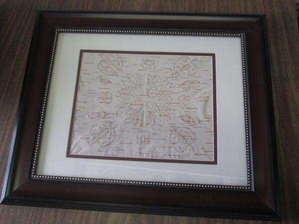 BIRCH BARK BITINGS NATIVE AMERICAN17 X 14 INCHES BEAUTIFUL FRAMEL FLOWER