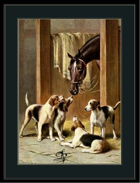 English Print Fox Hound Terrier Puppy Dog Dogs Horses Horse Art Picture Poster $9.59