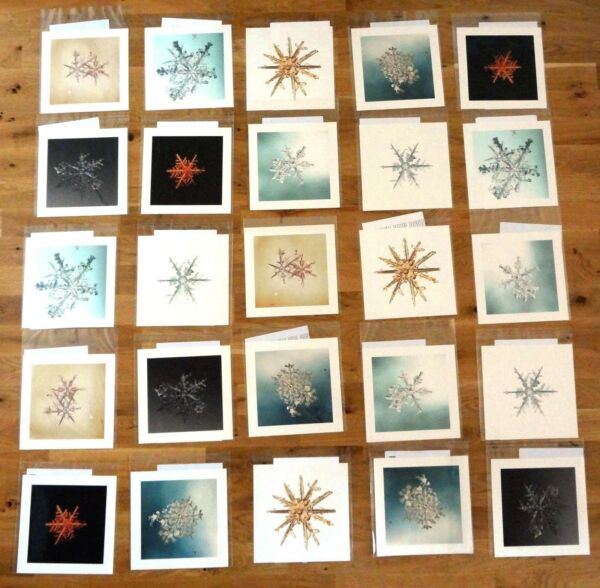 SIGNED - MIKE AND DOUG STARN - 25 SNOWFLAKE PRINTS (ALLEVERYTHINGTHATISYOU) FINE