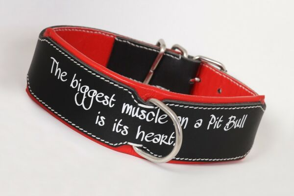 Pit Bull collarLeather collar Hand StitchedStrong Leather Collar for pitbull $23.50