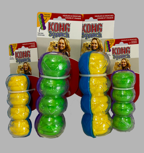 KONG Sqrunch Crunchy Dog Toy durable play squeaker interactive fetch